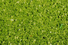 artificial grass Tanyfron